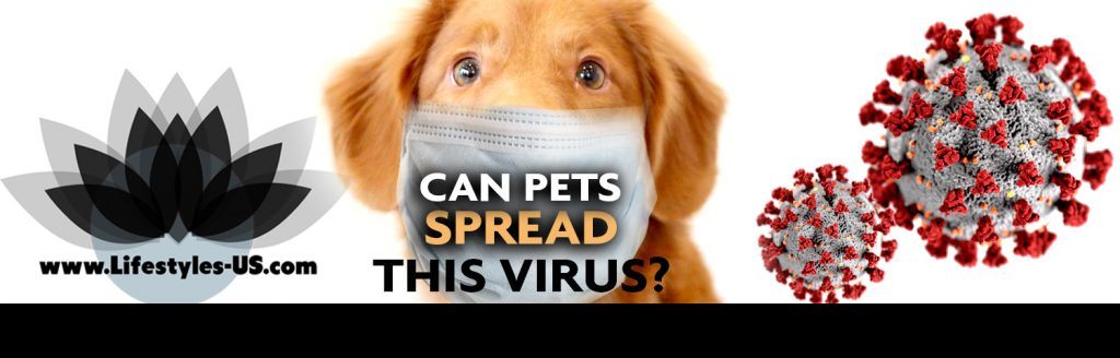 Can pets spread this virus?